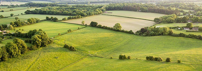 photo d'une vue sur des champs en pleine campagne
