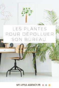 Epingle-Plantes-depolluantes